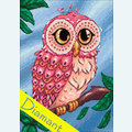 Colourful Owl - Diamond Painting pakket - Wizardi Pakket met vierkante diamantjes