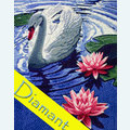 Princess Swan - Diamond Painting pakket - Wizardi Pakket met vierkante diamantjes