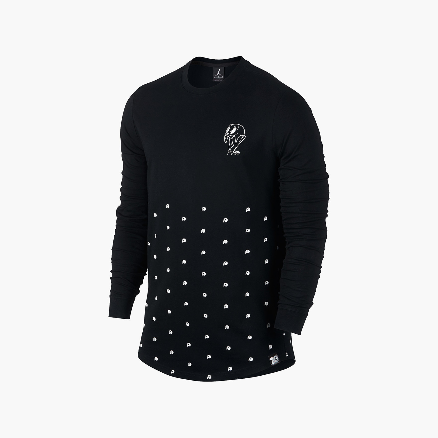 Jordan Air Jordan 11 Longsleeve Black / White 819121-010