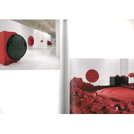 ANISH KAPOOR. Shooting into the Corner  | (Special Edition) | Artikelnummer: 200901