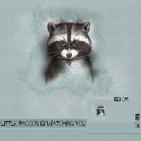 Little Racoon is watching you, Panel | lillestoff | Artikelnummer: LS BS-SSW-LIRA-1