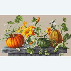 Pumpkins - borduurpakket met telpatroon - Luca-S |  | Artikelnummer: luca-b2303