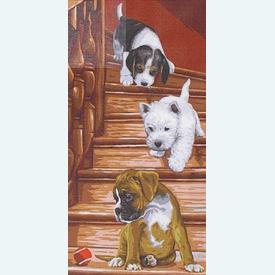 Puppies - bundel van geschilderd stramien + borduurwol, te borduren in halve kruissteek |  | Artikelnummer: rp-138-006-bundel