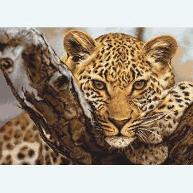 Leopard - borduurpakket met telpatroon Luca-S |  | Artikelnummer: luca-b525