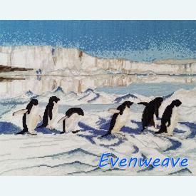 Penguin Paradise - borduurpakket met telpatroon Nafra | stof = evenweave | Artikelnummer: nf-nafra21081e