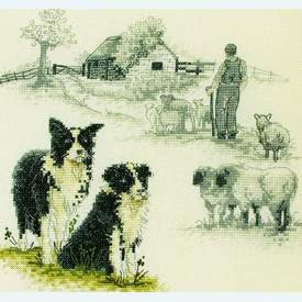 Border Collie - Borduurpakket met telpatroon Coats Crafts |  | Artikelnummer: cts-apc412