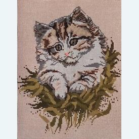 Cat - bundel van geschilderd stramien + borduurwol, te borduren in halve kruissteek |  | Artikelnummer: vvc-6009