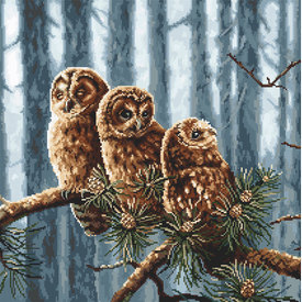 Owls Family - borduurpakket met telpatroon Letistitch |  | Artikelnummer: leti-946