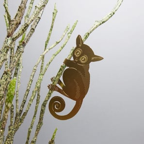 Buschbaby (Galago) | Plant Animal von Another Studio  | Artikelnummer: PA-Galago