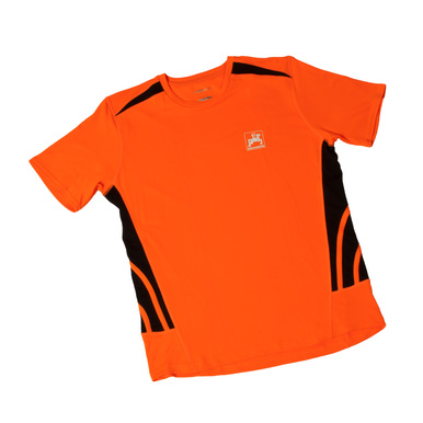 Herren-Sportshirt, orange |  | Artikelnummer: ML413