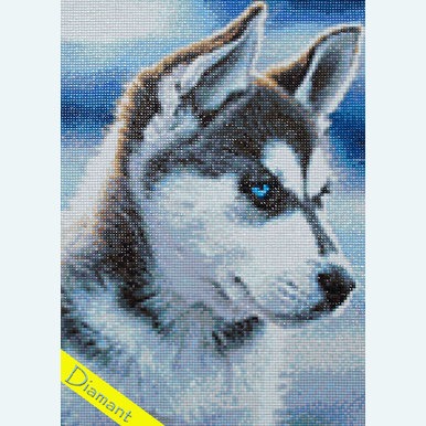 Snow Dog - Diamond Painting pakket - Wizardi | Pakket met vierkante diamantjes | Artikelnummer: wiz-wd088