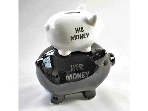 "Sparschwein ""his and her money"" 